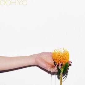 OOHYO - 꿀차 (Honey Tea)