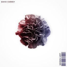 David Correy- Last Forever