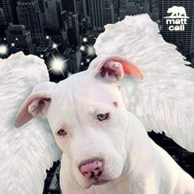 Let Me Fly (Matt Cali Remix) - DMX