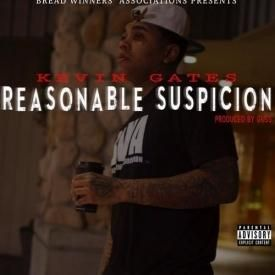 Reasonable Suspicion