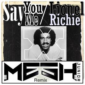 Say You,Say Me(Mesh Junior Remix)