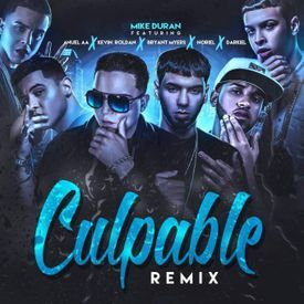 Culpable (Official Remix)