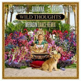 Wild Thoughts (Medasin Remix)