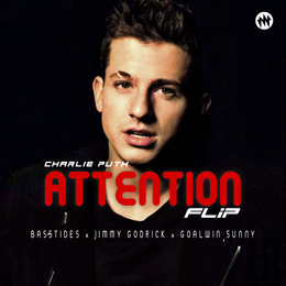Attention Flip - Basstides X Jimmy Godrick X Goalwin Sunny, Mix Vibe Muzik, Mix Vibe Records