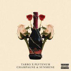 Tarro  PLVTINUM - Champagne  Sunshine