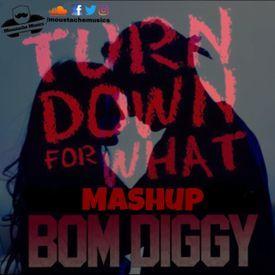 Bom Diggy X Turndown For What (Moustache Darbuka Mashup)