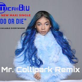 DO OR DIE - MR. COLLIPARK REMIX