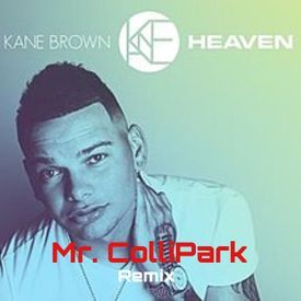 HEAVEN - MR. COLLIPARK REMIX