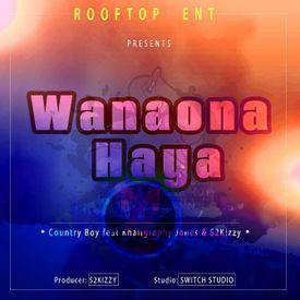 Wanaona Haya
