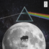 Darkside of The Moon