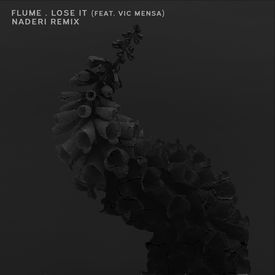 Lose It (Naderi Remix)