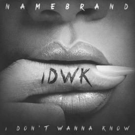 I Don't Wanna Know (Ft. BJ the Chicago Kid)