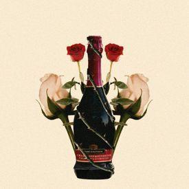 Plvtinum- Champagne & Sunshine