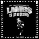 New Music 24/7 - 5 Burds (EP) Cover Art