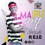 Niz Lib To Go - Mapu Say Cover Art