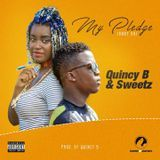 Niz Lib To Go - My pledge (Baby Oh) Cover Art