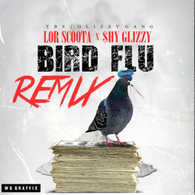 Bird FLu (Remix)