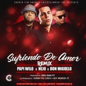 Sufriendo de Amor (Official Remix)