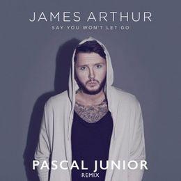 PascalJunior - Say You Won't Let Go (Pascal Junior Remix) Cover Art