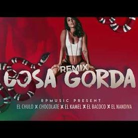 Cosa Gorda Official Remix