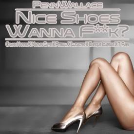 Nice Shoes Wanna F**k? (Calvin Harris X Marvin Gaye X Pitbull X Ludacris X
