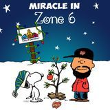 Phay - Miracle in Zone 6 Cover Art