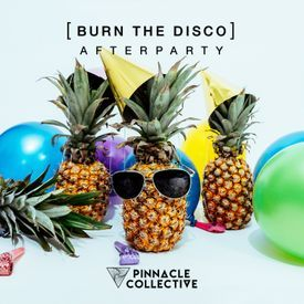 Burn The Disco - Afterparty