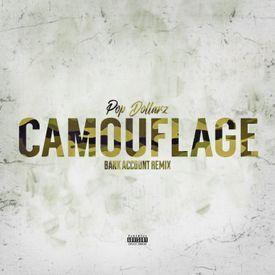 Camouflage (Bank Account Remix)