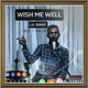 Wish Me well (cover)