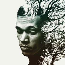 Trip Lee - Manolo (feat. Lecrae) Lyrics