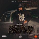 Promo Palace LLC - Fish N Grits Mixtape @DJGamble803 Cover Art