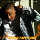 Promo Palace LLC - Fuel 2 My Fire Cover Art