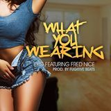 Promo Palace LLC - What You Wearing Feat. Fred nice Cover Art
