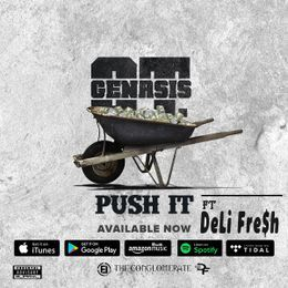 DeLi Fre$H - Push It (G-MiX ft. DeLi Fre$h) Cover Art