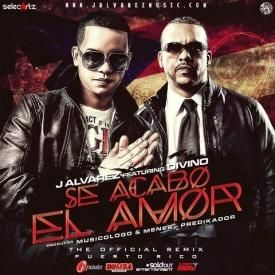 Se Acabo El Amor (Official Remix)