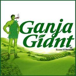 RealNigger - Green Giant Cover Art