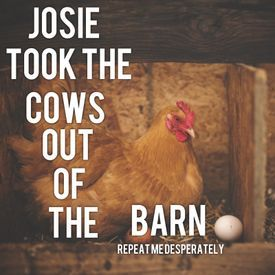 Josie took the cows out of the barn