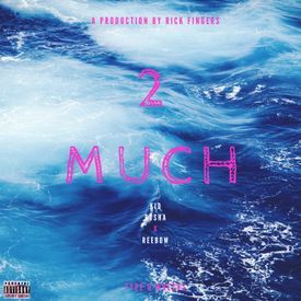 2 Much (Prod. By Rick Fingers)