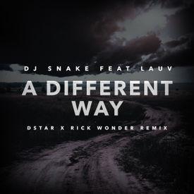 A different Way (Dstar X Rick Wonder Remix)