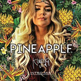 Pinaepple. Dj Ruben jm Extended intro mix