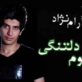 arya aramnejad ali barkhiz