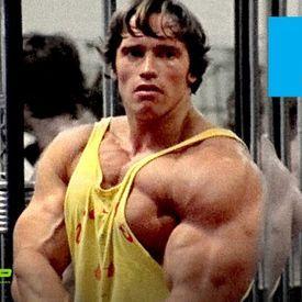 Arnold Schwarzenegger Gym Motivation Motivational Speech