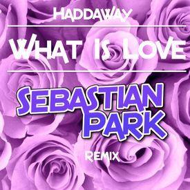 What Is Love <3 (Sebastian Park Remix)