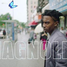 Playboi Carti - Magnolia