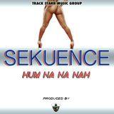 Sekuence - Hum Na Na Nah Cover Art