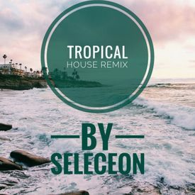 We dont talk anymore(Tropical House Remix)