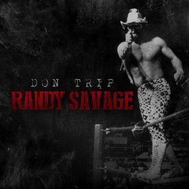 Sermon's Domain - Randy Savage Cover Art