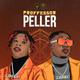 Professor  Peller