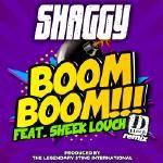 Shaggy - Boom Boom (Official Remix) Cover Art