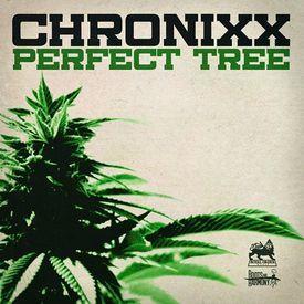 Perfect TreeCannabis (Ft. Eesah)